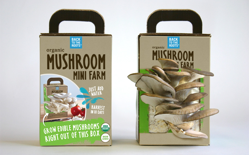 packaging for mushrooms